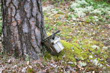 Wooden Birdhouse Is Lying On The Ground Under Pine Tree In The Forest