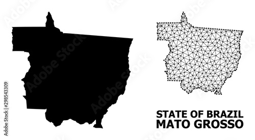 Solid and Network Map of Mato Grosso State Fototapet