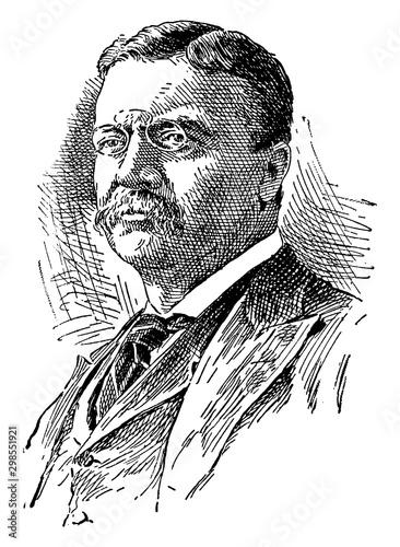 Fotografie, Obraz Theodore Roosevelt, vintage illustration
