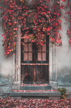 Vintage Wooden Door And Autumn...