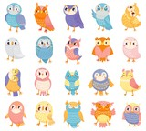 Cartoon owl. Cute color owls, forest birds and hand drawn baby owl. Owlet birdie characters, doodle baby owls expression. Isolated vector illustration icons set
