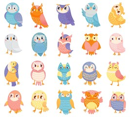 FototapetaCartoon owl. Cute color owls, forest birds and hand drawn baby owl. Owlet birdie characters, doodle baby owls expression. Isolated vector illustration icons set