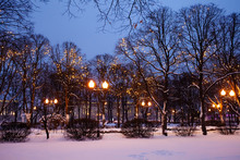 Festive Romantic Fairytale Winter Evening Park Landscape. Snow Covered Trees, Christmas Light Chains Garland Decoration And Street Lights.