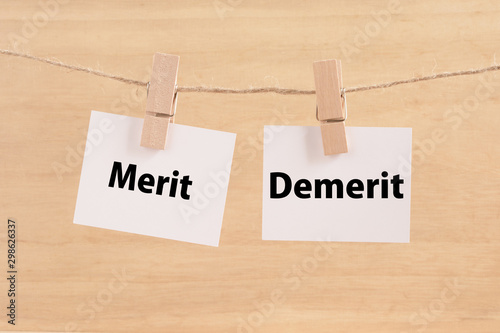 Merit   Demerit Canvas Print