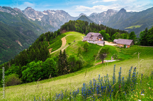 Obraz Logar valley view from the Solcava panoramic road, Slovenia - fototapety do salonu