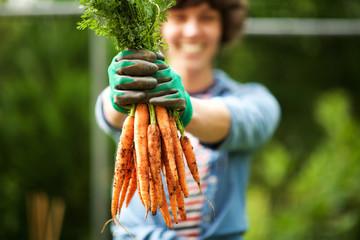 Close up gardener with bunch of carrots in hand in garden