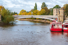 Geese Flying Over River Ouse I...