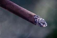 Cigarr, Sweden