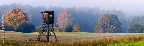 Fototapeta Hunting tower on the edge of the forest during a beautiful sunrise on a foggy morning obraz