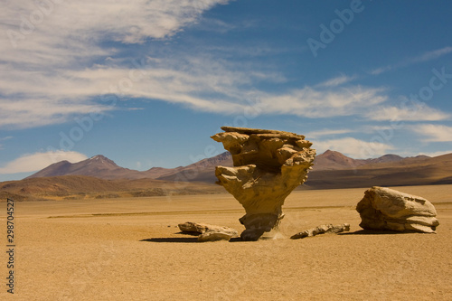 Obraz Arbol de Piedra (tree of rock), the famous stone tree rock formation in Bolivia - fototapety do salonu