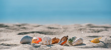 Summer Sandy Beach Travel With Seashell, Starfish And Blue Sea Background.