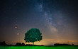 Leinwanddruck Bild - Milky Way with lonely tree on the hill. Landscape with night starry sky and lonely tree in the front.