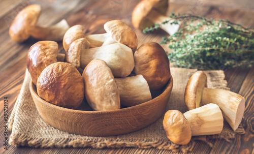 Pinturas sobre lienzo  Bowl of porcini mushrooms