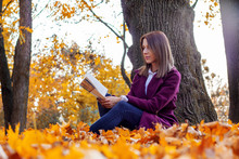 Young Woman Sits Under A Tree ...