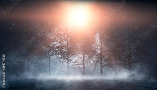 Foto auf Gartenposter Cappuccino Dark abstract winter forest background. Wooden floor, snow, fog. Dark night background in the forest with moonlight. Night view, magic