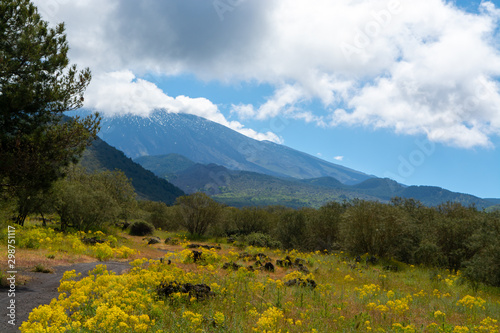 Tuinposter Purper View on dangerous active stratovolcano Mount Etna on east coast of island Sicily, Italy
