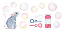 Colorful Soap Bubble Collectio...