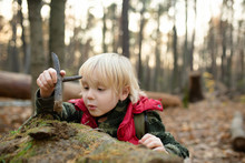 Little Boy Play With Stick In Forest On Autumn Day.