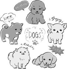 人気 犬 5種 セッ...