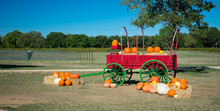 Festive Red Fall Wagon Carrying Pumpkins Ouside A Texas Winery