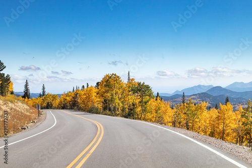 Empty highway winding through a golden fall aspen forest in a Colorado mountain landscape