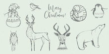 Vector Christmas Illustration Collection - Snowman, Owl, Deer, Cat, White Bear, Penguin On Grey Craft Background. Winter Design. Merry Christmas And Happy New Year!