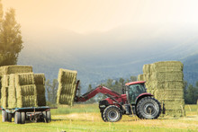 A Farmer Is Loading Bales Of Straw To An Attachment Truck With Farm Tractor In The Field