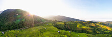 Panorama Aerial View Morning S...