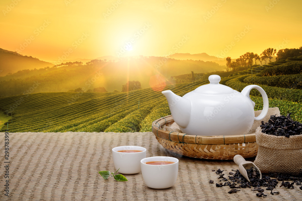 Fototapety, obrazy: Warm cup of tea with teapot, green tea leaves and dried herbs on the bamboo mat at morning in plantations background with empty space, Organic product from the nature for healthy with traditional