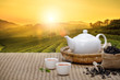 Leinwandbild Motiv Warm cup of tea with teapot, green tea leaves and dried herbs on the bamboo mat at morning in plantations background with empty space, Organic product from the nature for healthy with traditional
