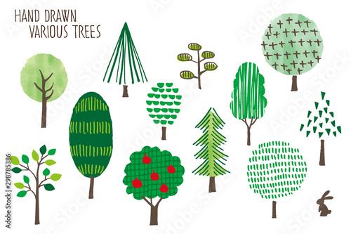 Hand drawn various Trees -summer- #298785386
