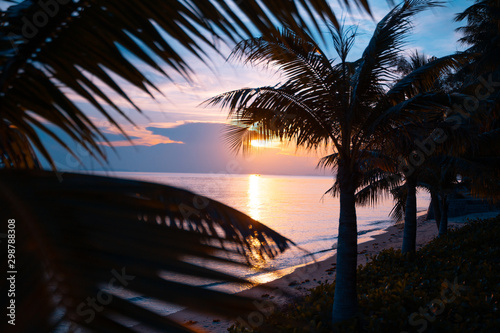 Fototapeta Bright colorful sunset on the shore of a tropical sea, silhouettes of palm trees against the sky, tropical paradise obraz na płótnie