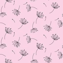 Simple Dandelions On Pink Seam...