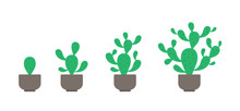 Prickly Pear Potted Plant Phas...