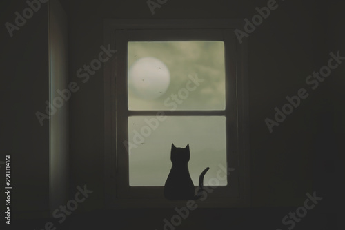 Cuadros en Lienzo black cat looks curiously at the moon from the window of the house