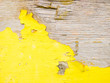 canvas print picture - Wood texture with yellow flaked paint. Peeling paint on weathered wood. Old cracked paint pattern on rusty background. Chapped paint on an old wooden surface