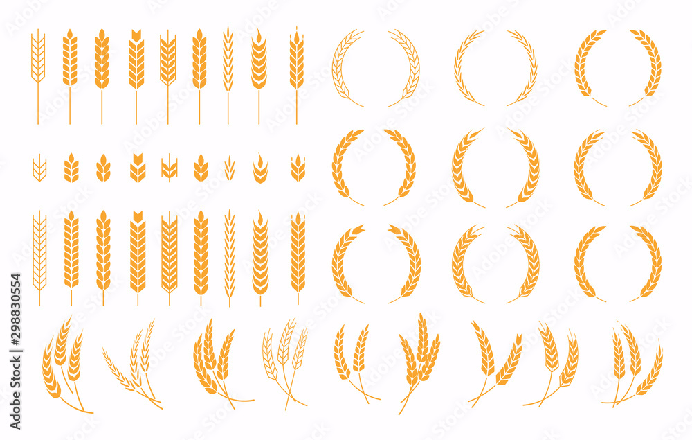 Fototapety, obrazy: Set of wheats ears icons and wheat design elements. Harvest wheat grain, growth rice stalk and whole bread grains or field cereal nutritious.