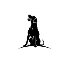 Rhodesian Ridgeback Dog - Isolated Vector Illustration