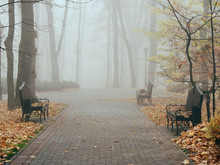 Cozy Benches In A City Foggy P...