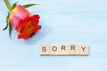 Word Sorry And Flower On A Blue Background.