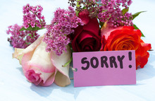 Word Sorry And Flowers On A Blue Background.