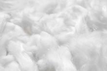 Cotton Soft Fiber Texture Back...