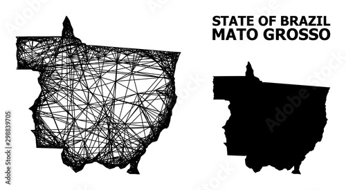 Wire Frame Map of Mato Grosso State Wallpaper Mural