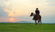 Cowboy And Horse At First Ligh...