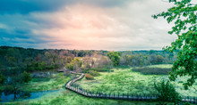 Panorama Of A Dramatic Cloudy Sky At Sunset Over Michigan Preserve Boardwalk In Natural Wilderness