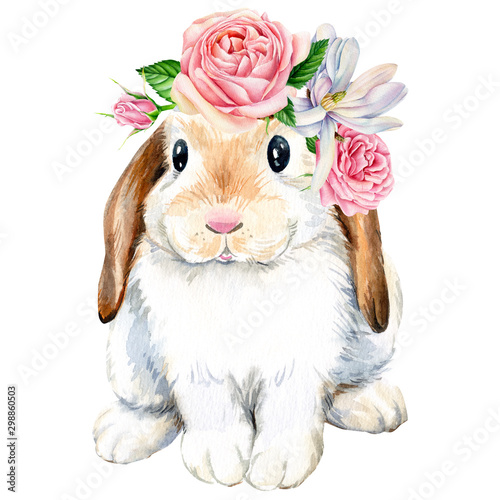poster, cute bunny with roses flowers on an isolated white background, animals i Fototapeta