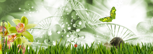 Abstract dna molecules together with a butterfly, snail and ladybug on a background of a fantastic landscape.