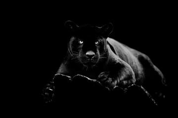 FototapetaBlack jaguar with a black background