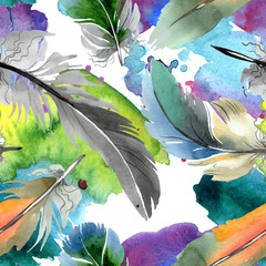 Naklejka Boho Colorful bird feather from wing isolated. Watercolor background illustration set. Seamless background pattern.