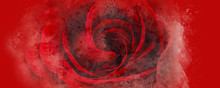 Watercolor Red Rose Abstract B...